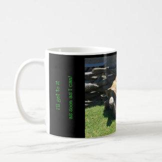 Lustige Mitteilungs-Schildkröten-Tasse Kaffeetasse