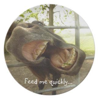 Lustige offene Mouthed Esel-Platte - füttern Sie Party Teller
