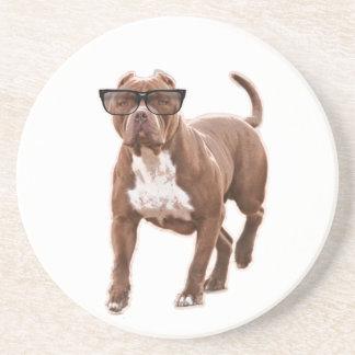 Lustige Pitbull in den Gläsern Sandstein Untersetzer