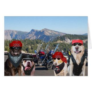 Lustige Radfahrer-Hunde auf einem Karte