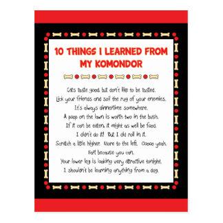Lustige Sachen I gelernt von meinem Komondor Postkarte