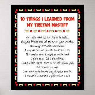 Lustige Sachen I gelernt von meinem tibetanischen  Posterdruck