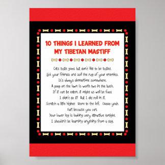 Lustige Sachen I gelernt von meinem tibetanischen  Poster