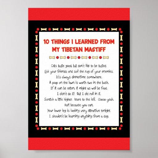 Lustige Sachen I gelernt von meinem tibetanischen  Plakatdruck