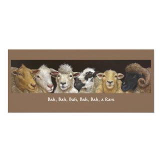 Lustige Schafkarte 10,2 X 23,5 Cm Einladungskarte
