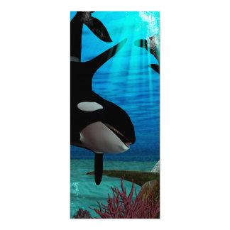 Lustige Schwertwale 10,2 X 23,5 Cm Einladungskarte