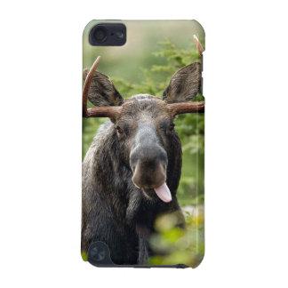 Lustige Stier-Elche iPod Touch 5G Hülle