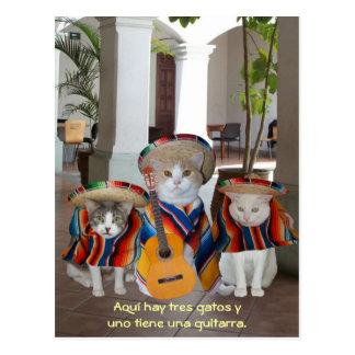 Lustige Tres Gatos spanische Lehrmittel Postkarte