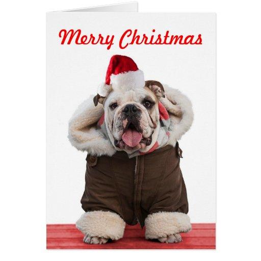 Lustige und niedliche bulldoggen weihnachtskarten gru karten zazzle - Niedliche weihnachtskarten ...