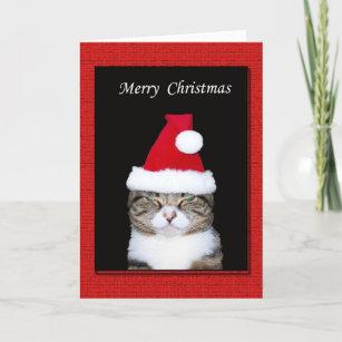 Lustige Weihnachtssprüche Für Karten.Lustige Weihnachtsgrüße Karten Zazzle De