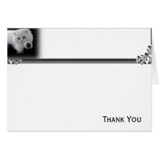 Lustige weiße persische Katzen-Anmerkungs-Karte Mitteilungskarte