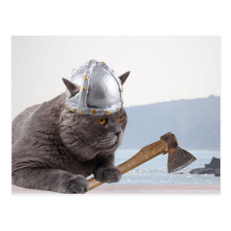 Lustige Wikinger-Katze Postkarte