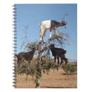 Lustige Ziegen in einem Baum Notizblock