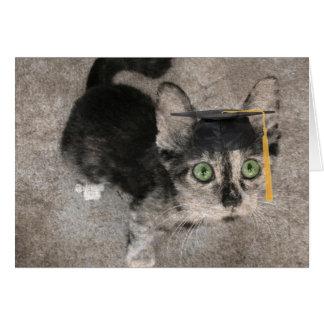 Lustiger Abschluss, breites mit Augen Kätzchen Karte