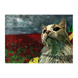 """Lustiger Acrylkunst-Druck Katzen-""""Zauberers von Acryldruck"""
