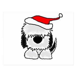 Lustiger alter englischer Schäferhund in der Postkarten