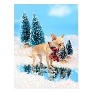 Lustiger Chihuahua mit Schal und Skaten Postkarten