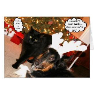 Lustiger Collie-u. schwarze Katzen-Weihnachtskarte Karte