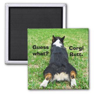 Lustiger Corgi-Hintern Quadratischer Magnet