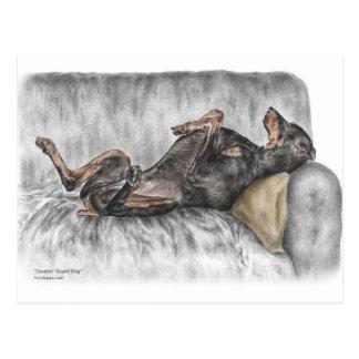 Lustiger Dobermann auf Sofa Postkarte