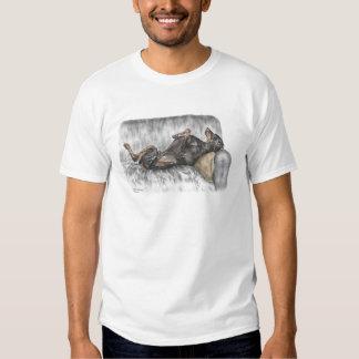 Lustiger Dobermann auf Sofa Tshirt