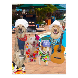 Lustiger Hundekundengerechte Pool-Party-Postkarte Postkarte