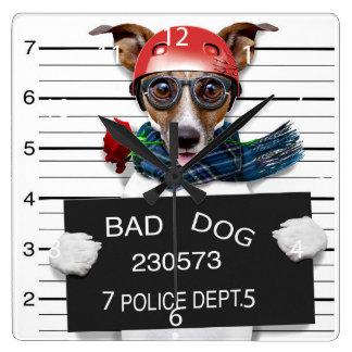 Lustiger Jack Russell, Mugshothund Quadratische Wanduhr