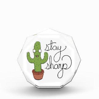 Lustiger Kaktus-Aufenthalt-Scharf-Charakter Auszeichnung