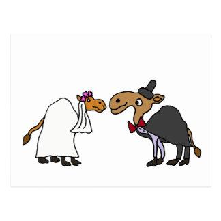 Lustiger Kamel-Braut-und Postkarte