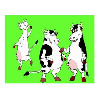 Lustiger Kuh-Cartoon Postkarte