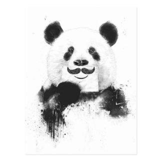 Lustiger Panda Postkarte