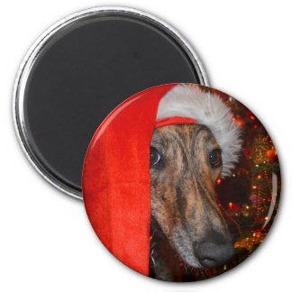 Lustiger Sankt-Hund - Runder Magnet 5,1 Cm