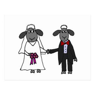 Lustiger Schaf-Hochzeits-Cartoon Postkarte