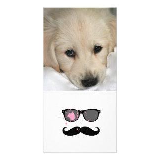 Lustiger Schnurrbart und Sonnenbrille Fotokartenvorlage
