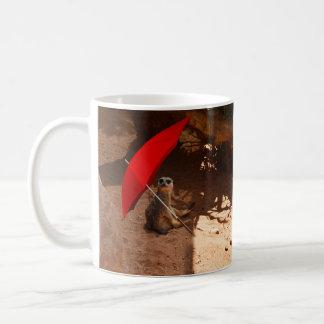 Lustiger Sun intelligentes Meerkat unter Kaffeetasse