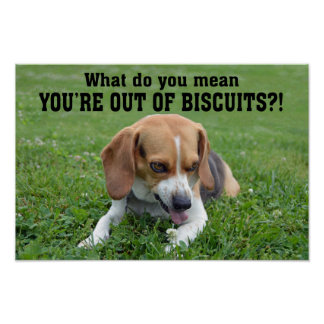 Lustiger verärgerter Beagle aus Keksen heraus Poster