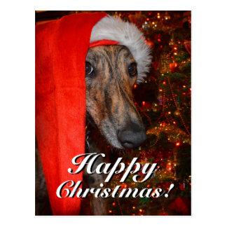 Lustiger Weihnachtssankt-WindhundLurcher Postkarte