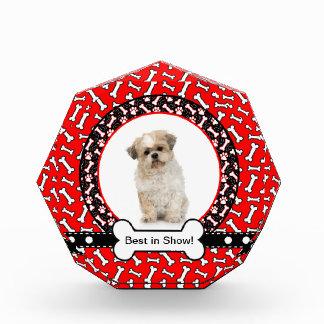 Lustiges Bestes Show-HundeFoto-im roten Acryl Auszeichnung