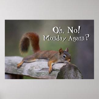 Lustiges Eichhörnchen Poster