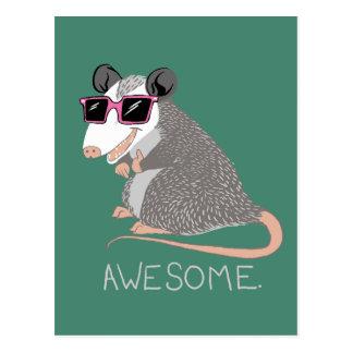Lustiges fantastisches Opossum Postkarte