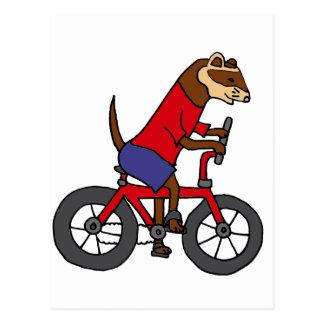 Lustiges Frettchen, das rotes Fahrrad fährt Postkarte