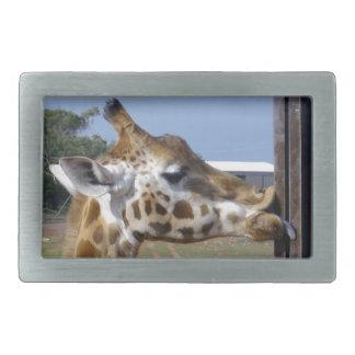 Lustiges Giraffen-Fältchen herauf jene Lippen, Rechteckige Gürtelschnalle