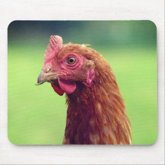 Lustiges Huhn-Porträt Mousepad