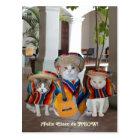 Lustiges Katzen Feliz Cinco De Mayo Postkarte