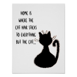 Lustiges Katzen-Haar-Zitat-niedliche schwarze Poster