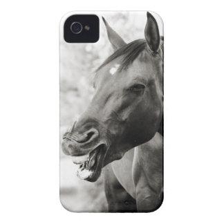 Lustiges lachendes Pferd iPhone 4 Hüllen