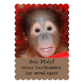 Lustiges neues Adressen-Tier-Baby Personalisierte Ankündigung