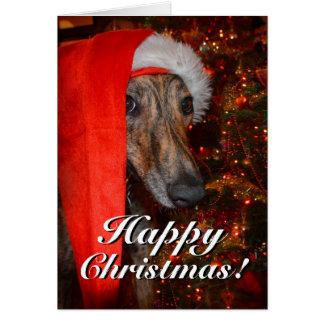 Lustiges Sankt-Hundelurcher-Windhund-Weihnachten Karte