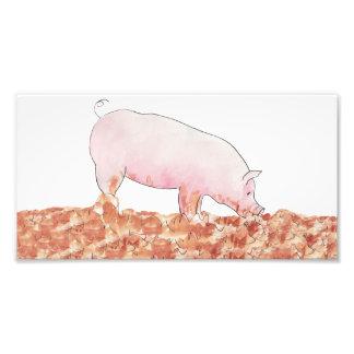 Lustiges Schwein im Schlammneuheitskunst-Fotodruck