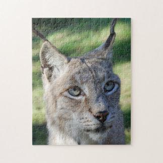 Lynx Luchs Puzzle